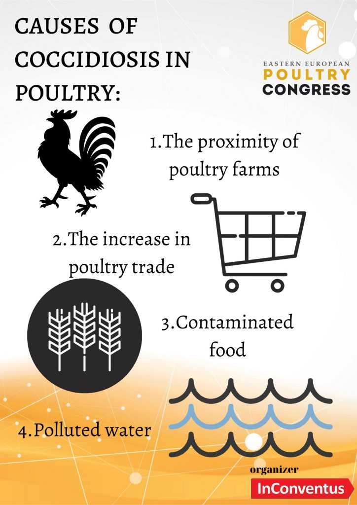 Poultry Congress